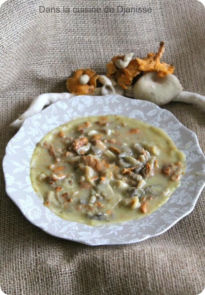 Ragoût de champignons