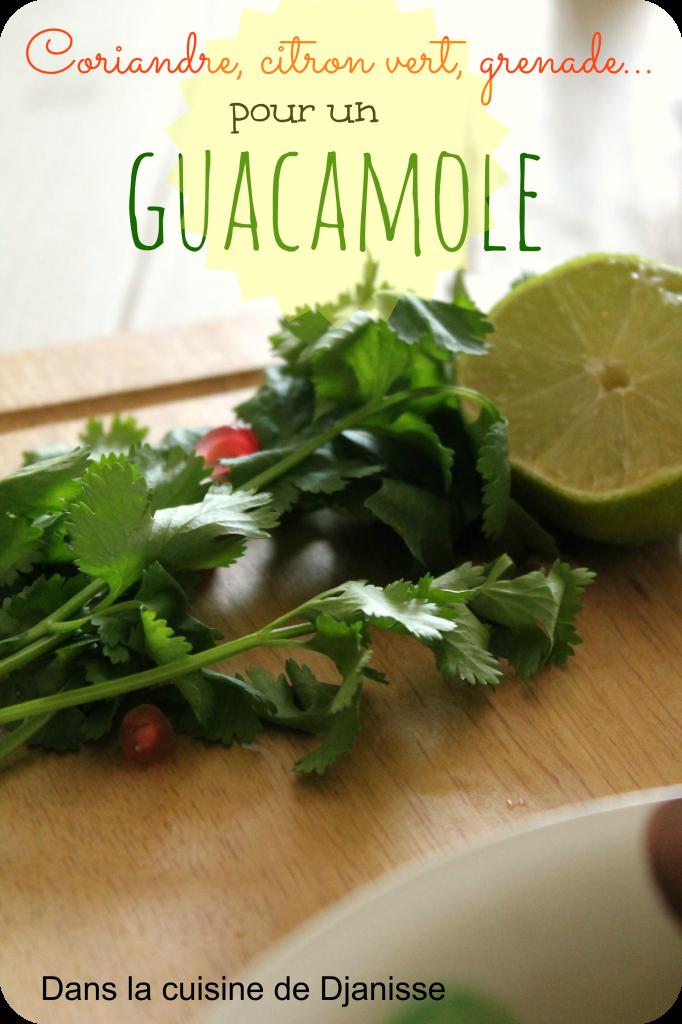 Guacamole à la grenade