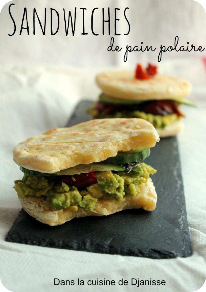 Turbo Sandwiches de pain polaires {recette végétalienne} GO62